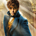 SEGURA! J.K. Rowling confirma CINCO FILMES para franquia de Newt Scamander!