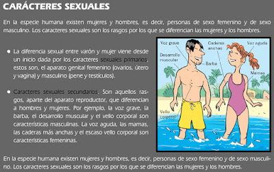 http://chuegos.ftp.catedu.es/kono/sexto/t6/3.swf