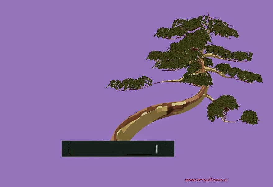 Modelo Bonsai virtual 3D hecho con virtualbonsai software