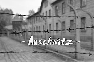 http://www.vipavi.es/2016/01/auschwitz-en-imagenes.html