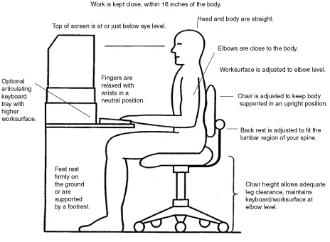 Office Anything Furniture Blog: Dominate Your Day The Ergo