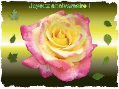 Joyeux Anniversaire Que Du Bonheur