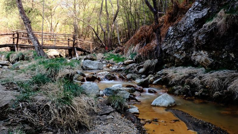 il torrente che scorre nella Riserva Naturale Regionale Monterano