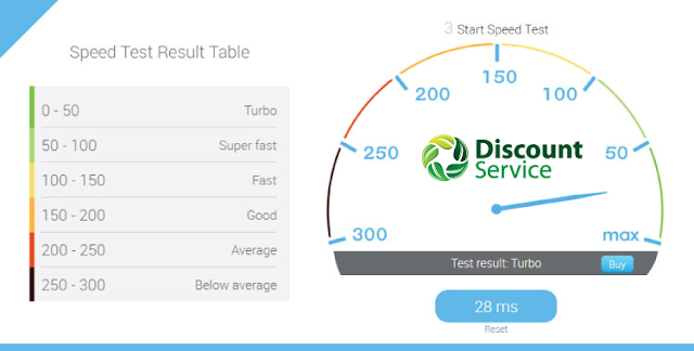 DiscountService WordPress 4.6.1 Hosting Speed