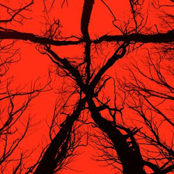 Poster Blair Witch 2016