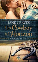 http://lachroniquedespassions.blogspot.fr/2014/03/rainbow-valley-tome-1-un-cowboy.html