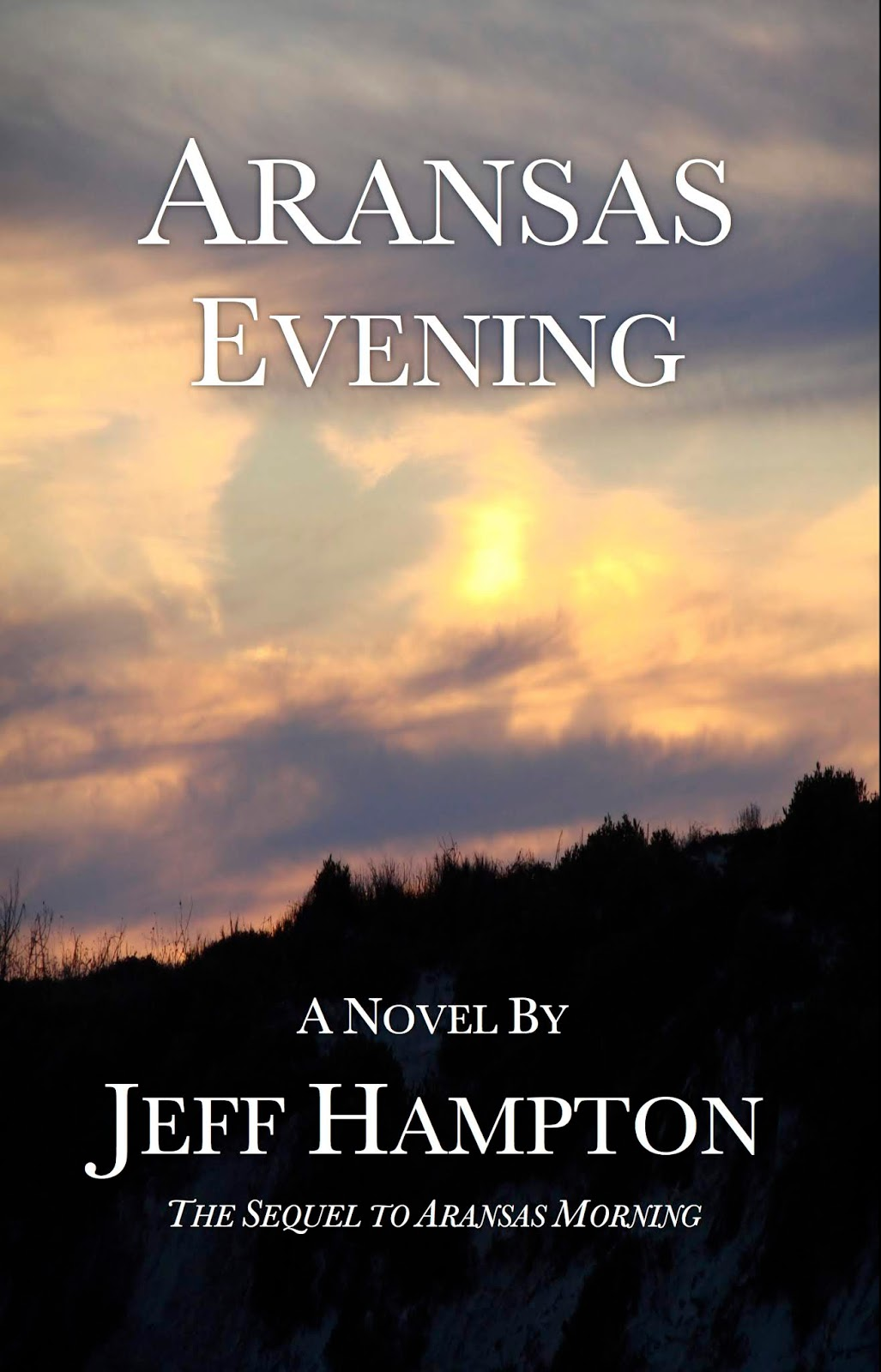 Aransas Evening book cover