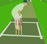 N Power Test Cricket