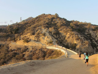 View north from Charlie Turner Trail toward Mt. Hollywood