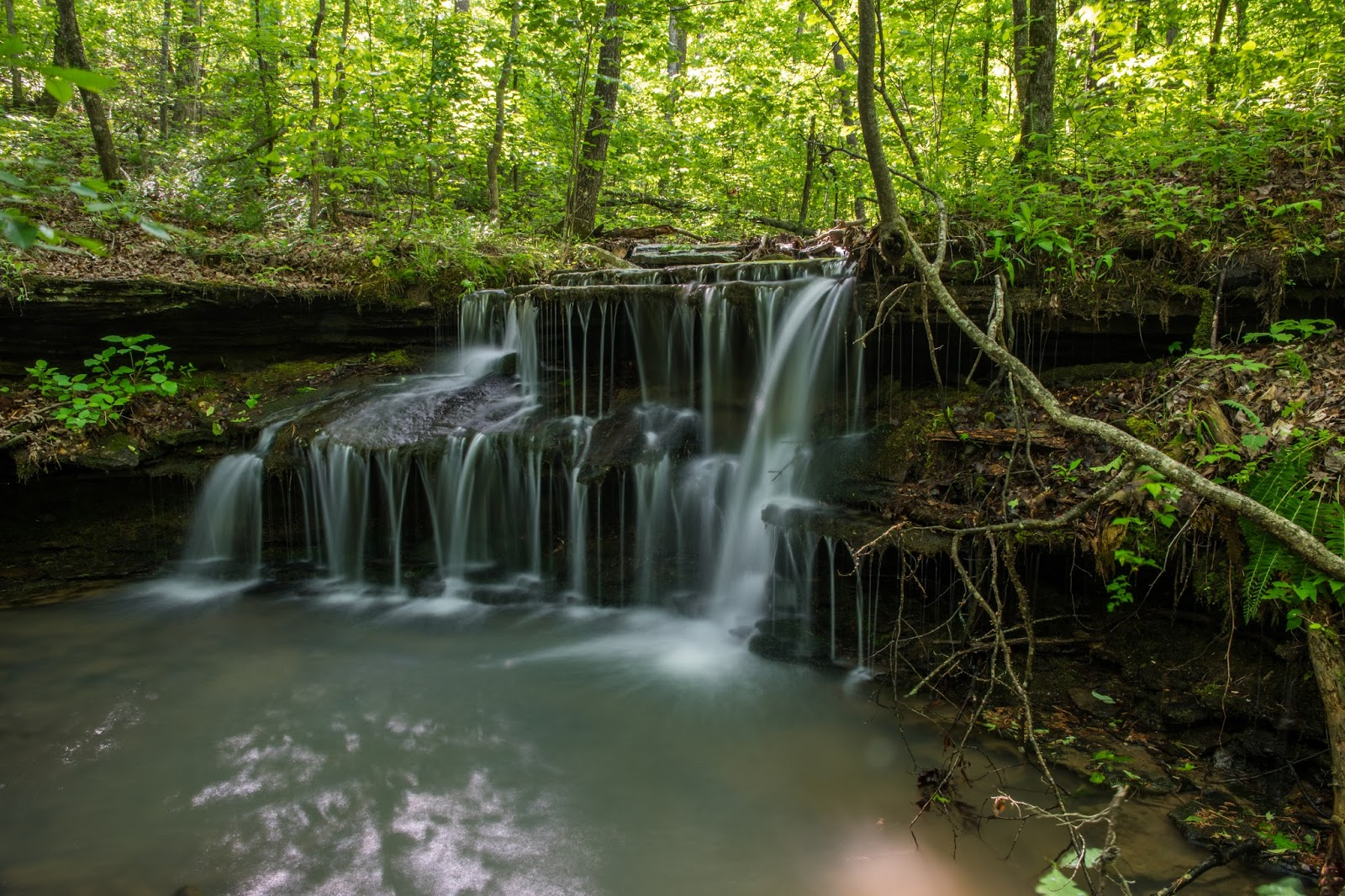 falls creek middle eastern singles Falls creek falls and cane creek falls is a 22 mile lightly trafficked loop trail located near spencer, tennessee that features a waterfall and is.