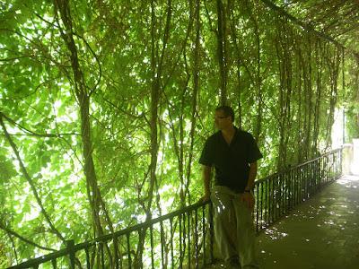 También en el Alcázar de Sevilla, en esta imagen ya se me ve la cara