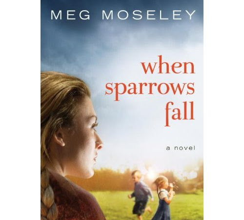 Review: When Sparrows Fall by Meg Moseley
