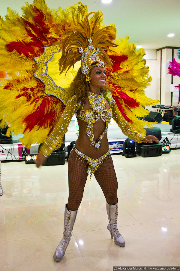 Краски бразильского карнавала Terra Brasil Show