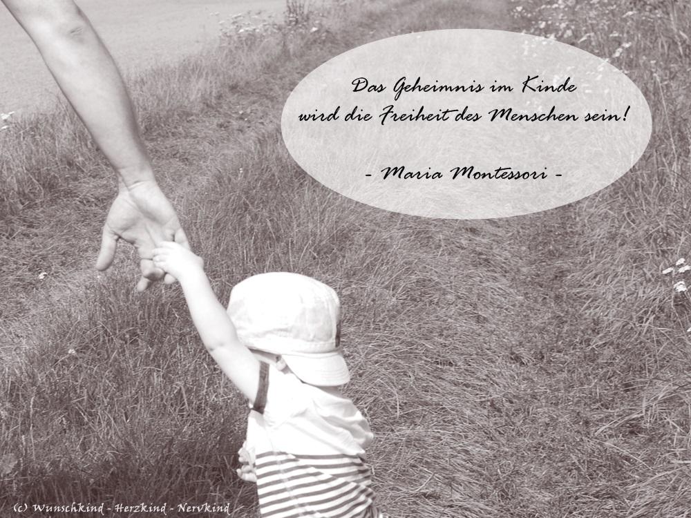 Wunschkind Herzkind Nervkind Montessori Ist Nicht Laissez Faire