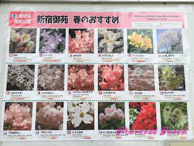 新宿御苑花種
