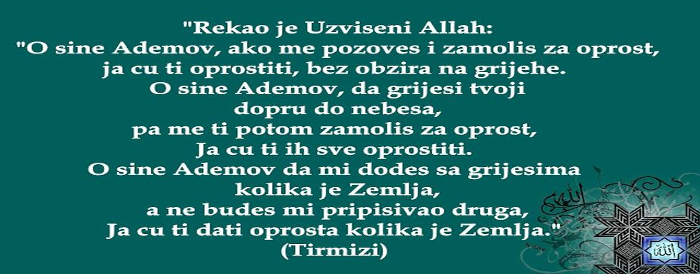 Staza Islama