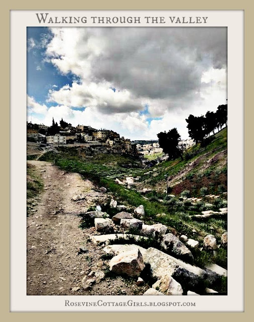 Kidron Valley Isreal