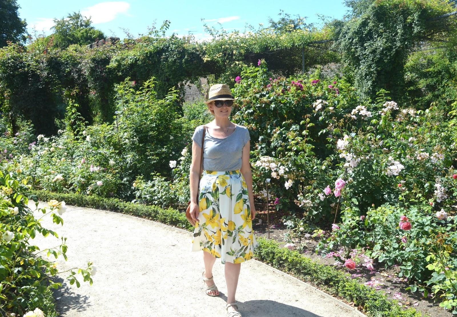 Alnwick Gardens Northumberland - Rose Garden