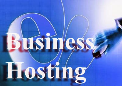 Choosing High Quality Business Web Hosting For Your Business Website