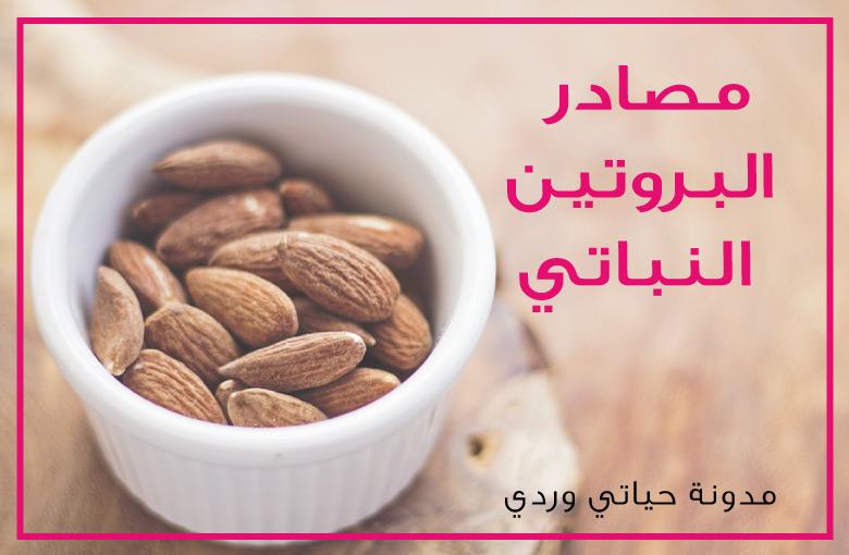 مصادر البروتين النباتي
