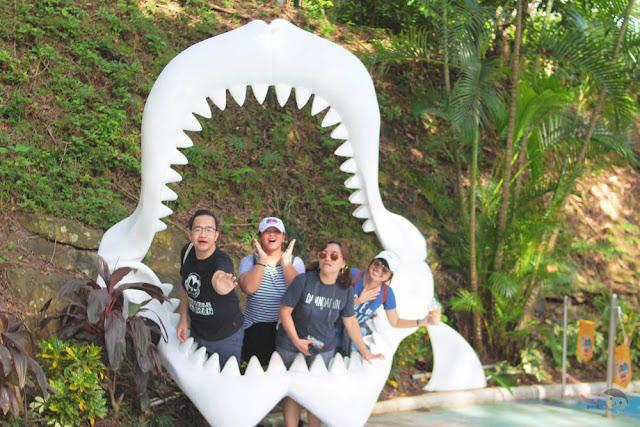 FSRM 2017 in Ocean Park - Shark 2