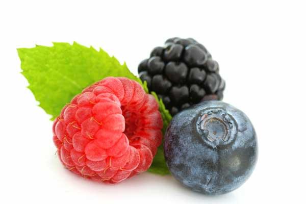 Inilah Manfaat Keluarga Berry