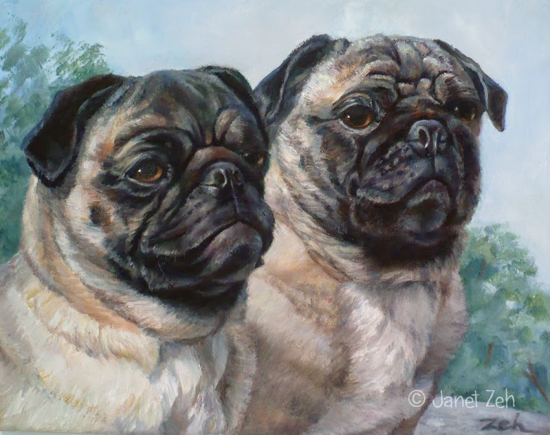 Portrait of two pugs in oil on canvas