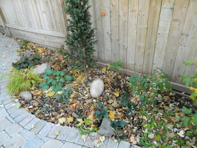 Toronto Cabbagetown garden makeover before by Paul Jung Gardening Services Inc