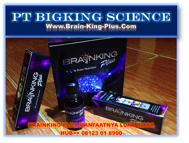 Brainking Plus 08123 01 8900