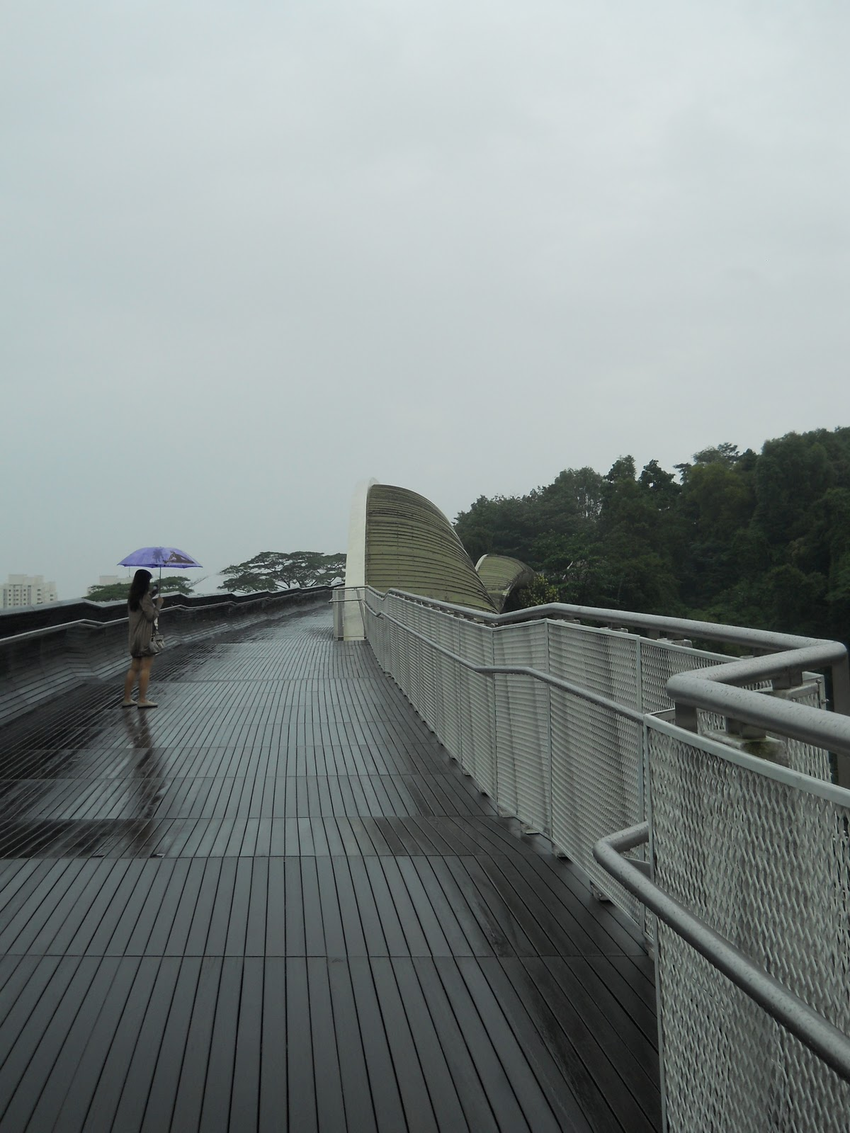Walking down the Henderson Waves Bridge | Snooky Sparkly Toes