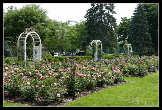 Schenectady Central Park