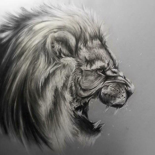 08-Lion-SW-Whiteside-www-designstack-co