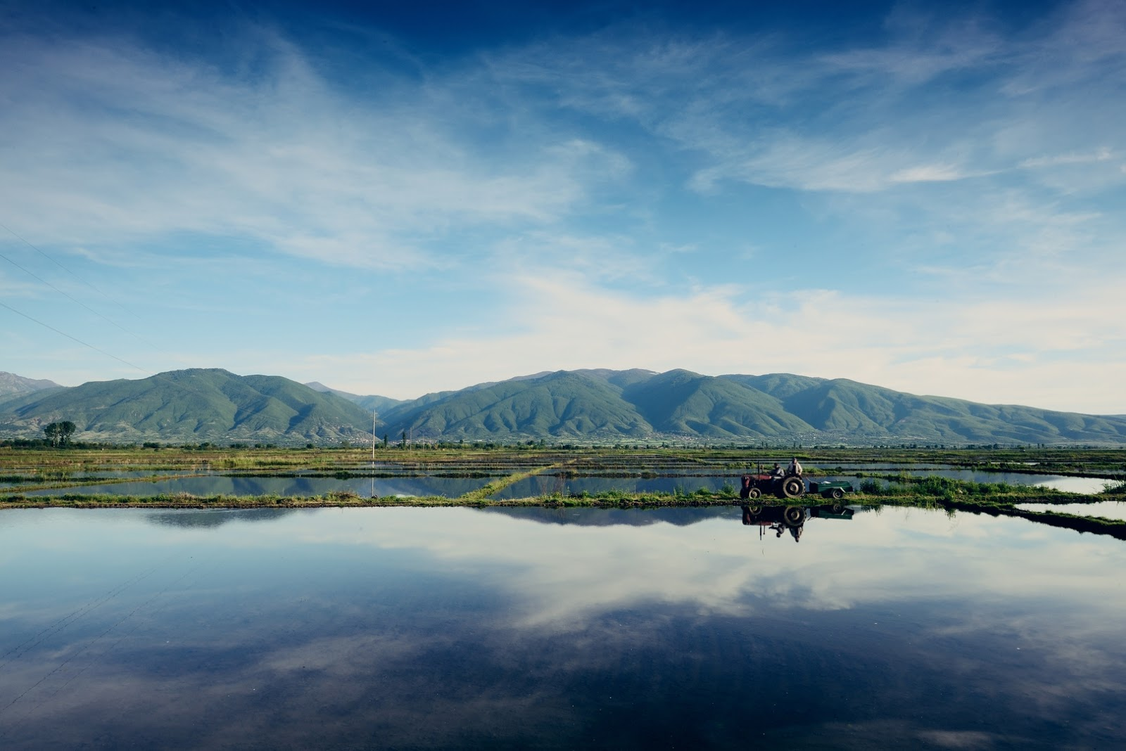 High Summer temperatures good for rice production in Kocani