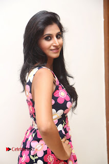 Shamili Latest Pictures in Floral Short Dress ~ Celebs Next