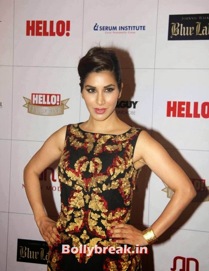 Sophie Choudry, Hello Awards 2013 Pics