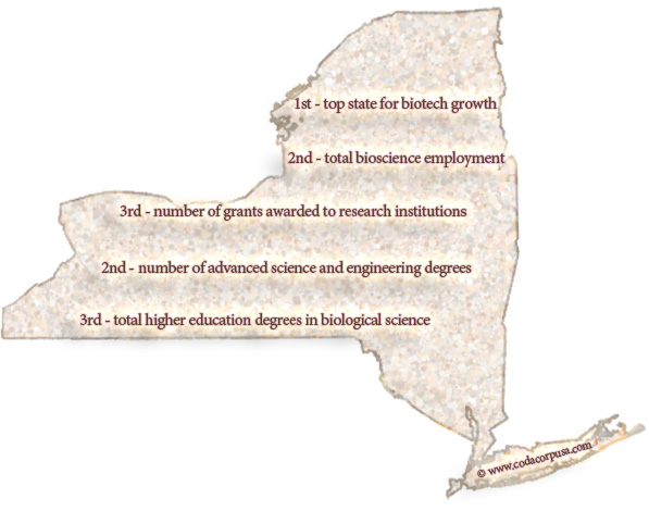 New York State Life Sciences, Biotech, Engineering Statistics, Rankings