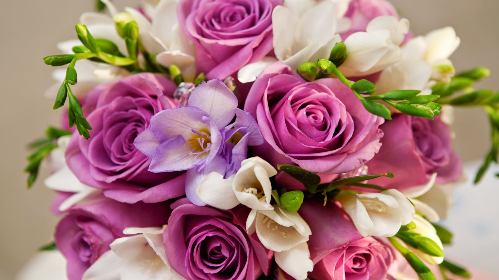 Most Beautiful Flowers in the World - Flower With Styles |Most Magnificent Flowers