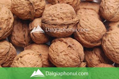 Hạt Óc Chó - Walnuts - Dai Gia Pho Nui