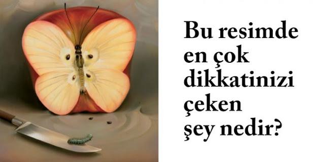 elma-kelebek-tirtil-deneyi-filoji-758x379.jpg