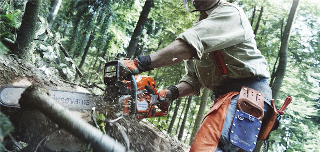 Man cuts log with Husqvarna Chainsaw
