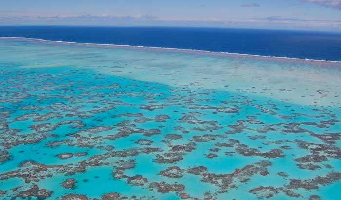great barrier reef,terumbu,karang,terbesar