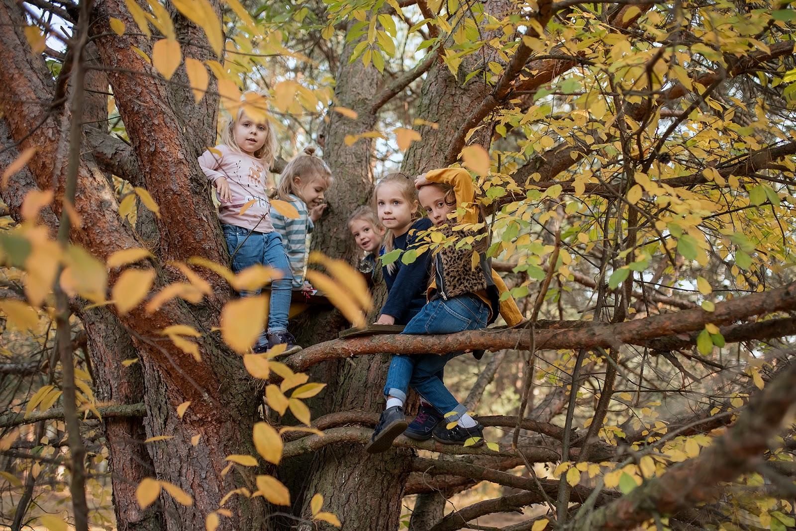 Leśne zabawy