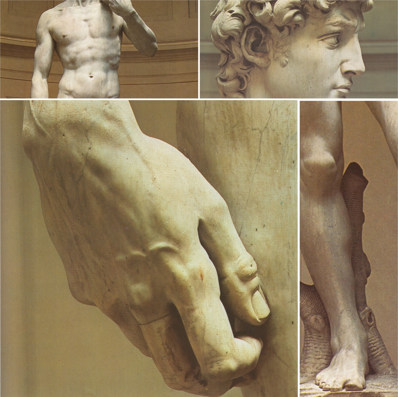 the sculptures of david and the origin of art Explore the life and works of the italian artist andrea del verrocchio and test your understanding about the italian renaissance, the masterpieces of verrocchio and the history of western art.