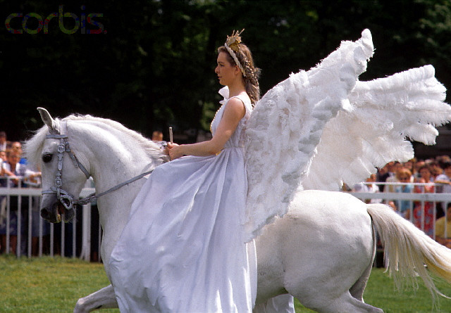 Carry Me Horse Costume for Adults by Wicked MA-8584 ... |Horse Fancy Dress Costumes