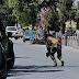 IS Attack In Kabul Iraqi Embassy