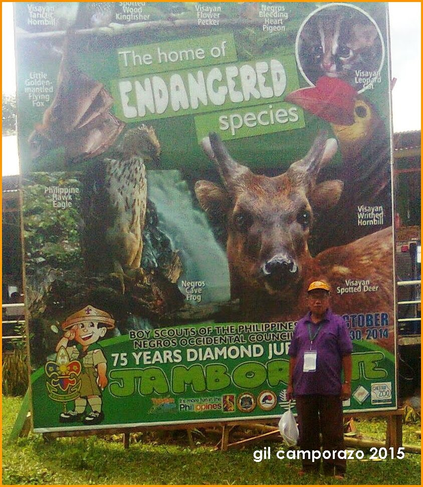 Endangered Animals and Fowls Species