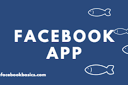 Download Facebook Lite App APK Version