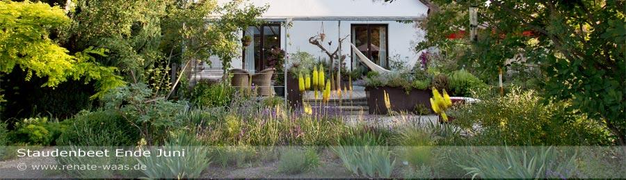 Pflanzplanung und Bepflanzung Garten mediterran - Eremurus - Steppenkerze ist ideal geeignet für mediterrane Blumenbeete