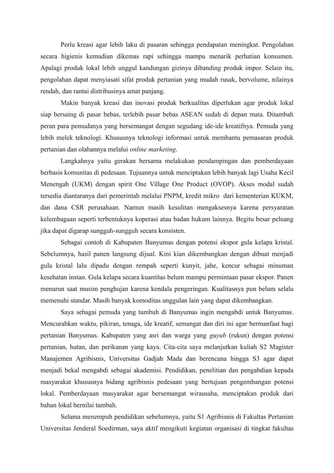 essay peranku bagi indonesia dan sukses terbesar dalam hidupku