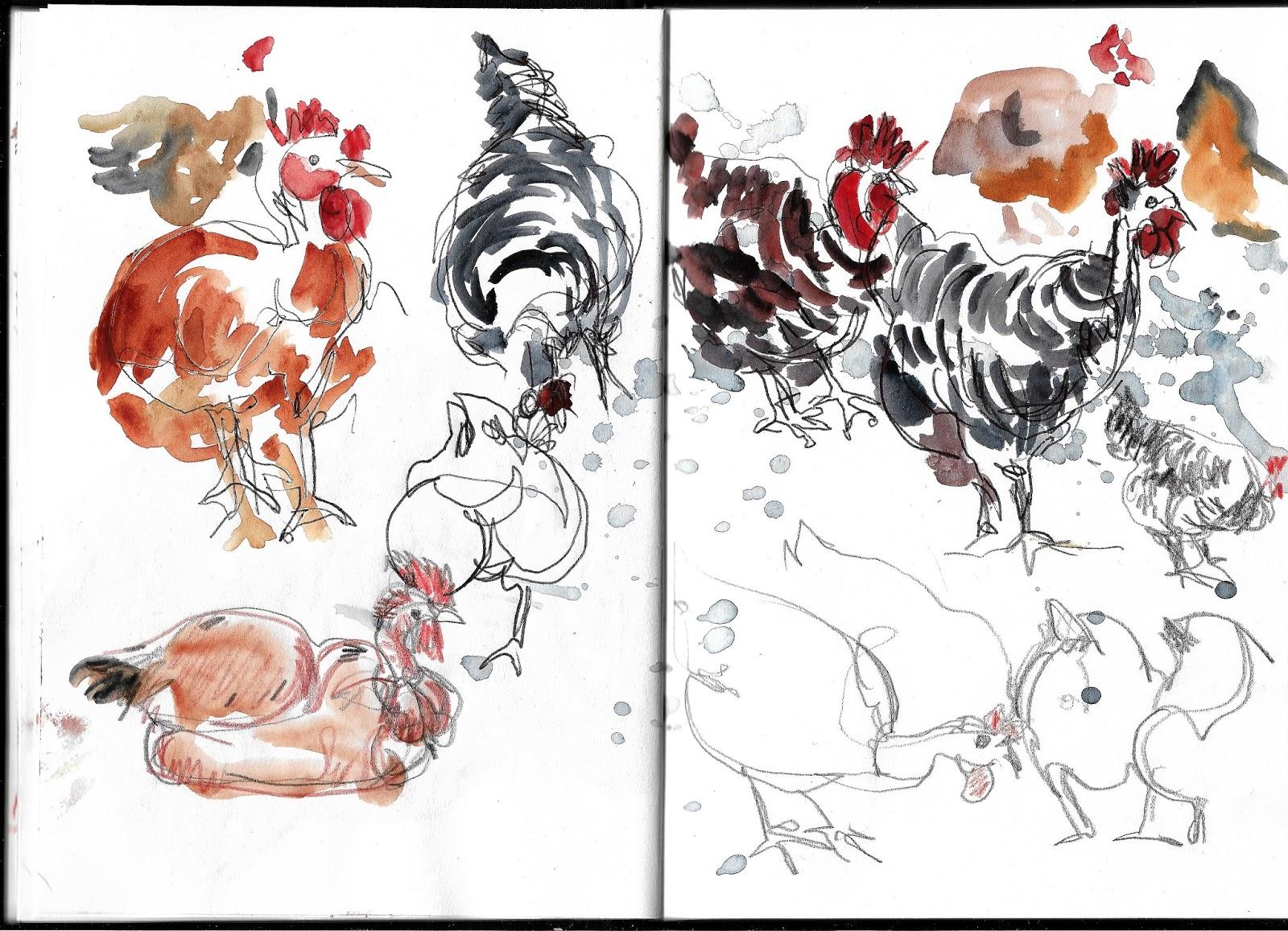 urban sketchers portugal o galinheiro